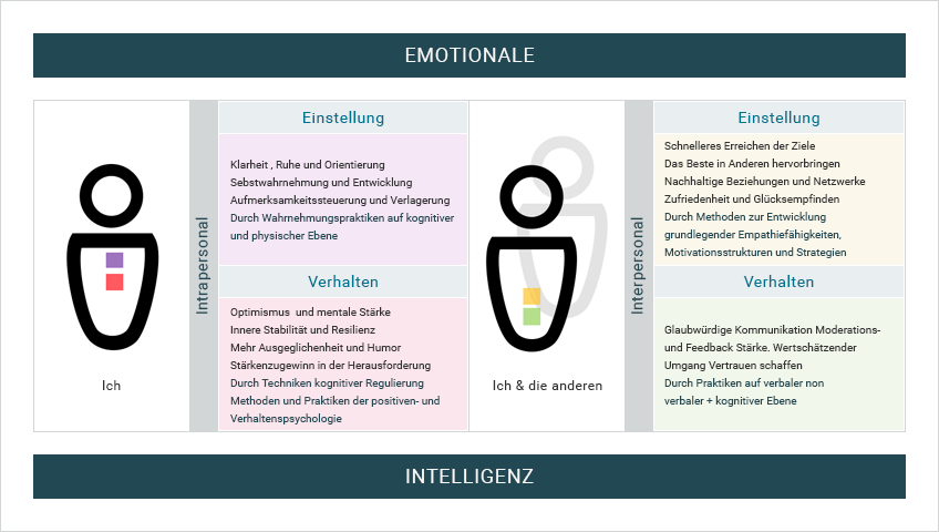 Feldermatrix der Emotionalen Intelligenz